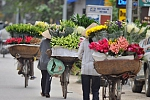 Flower shop in Hanoi, Vietnam